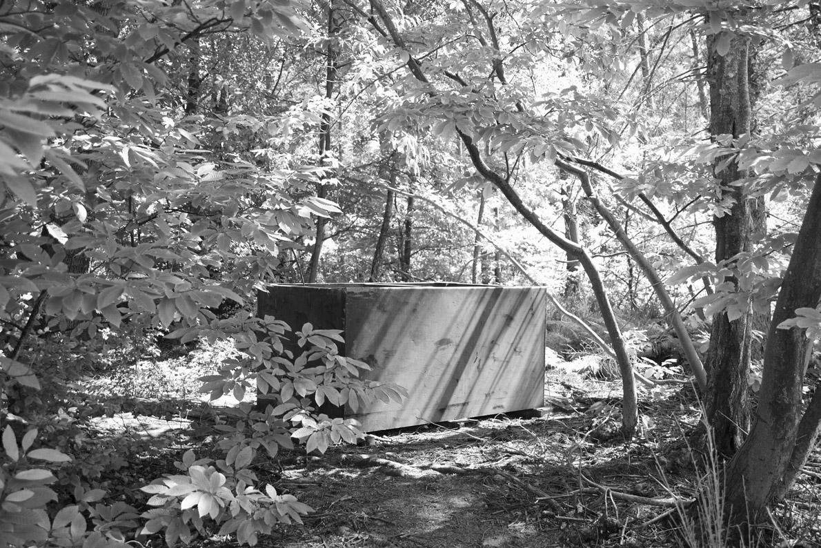 ESM-Woodland Tomb