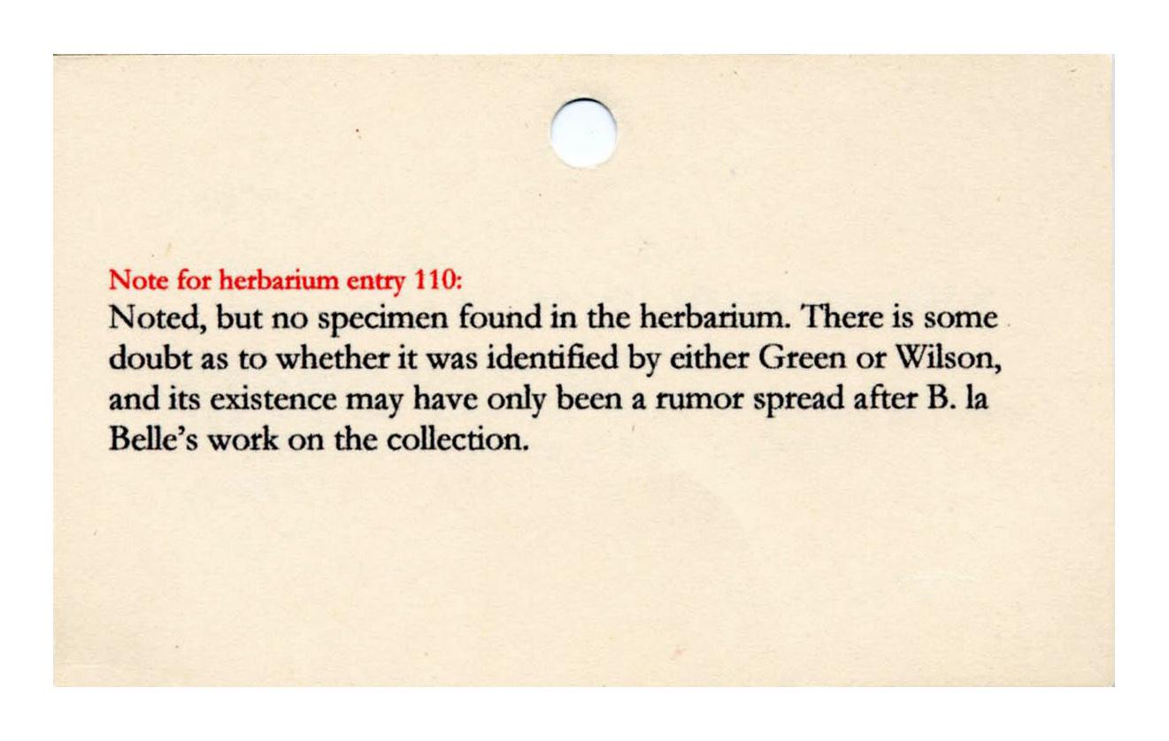 Herbarium Note 110
