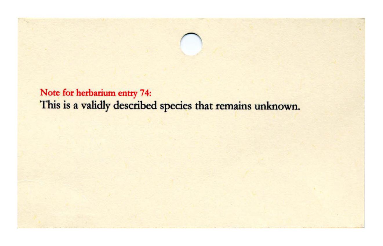 Herbarium Note 74