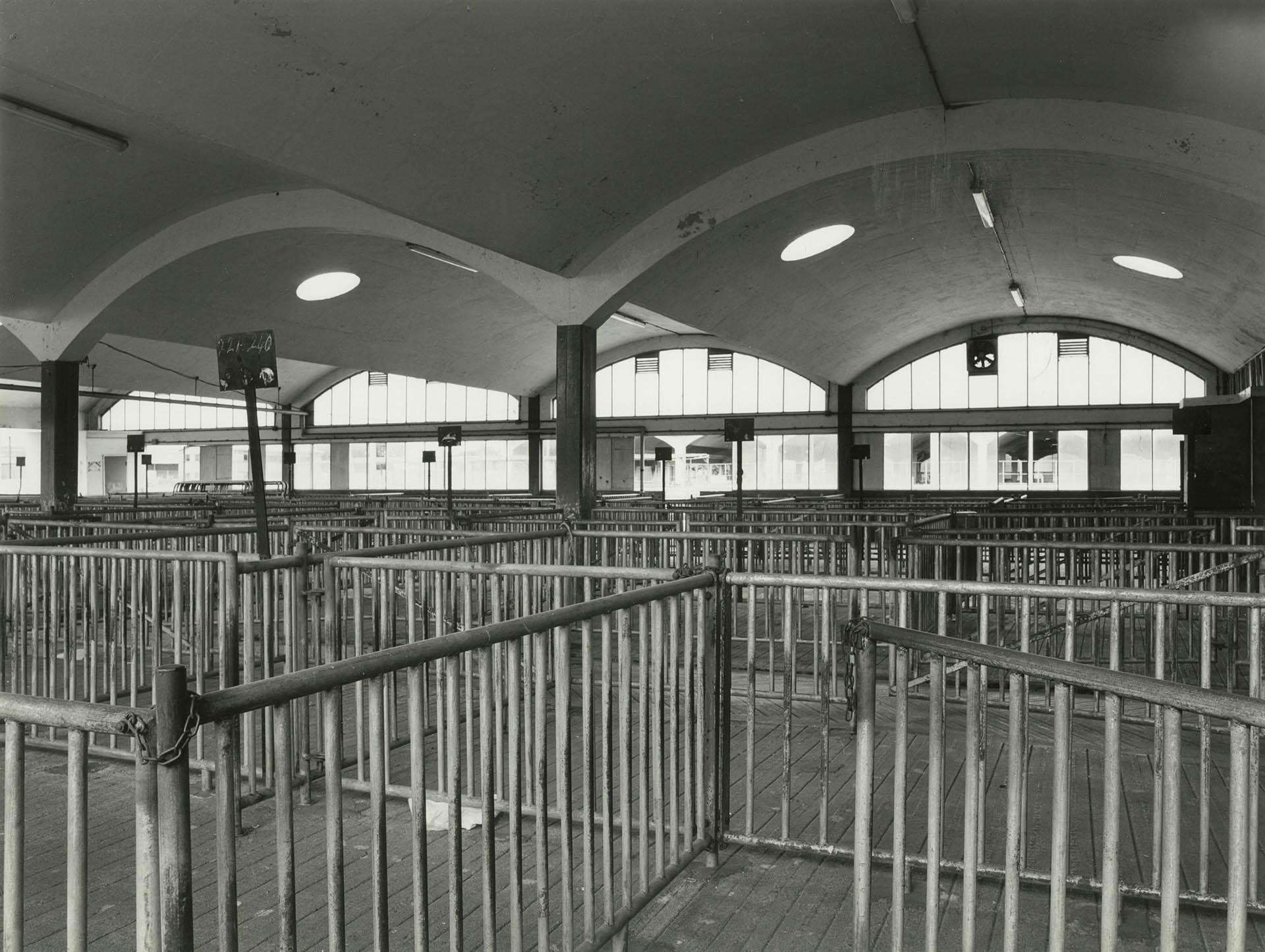 Photolanguage Gloucester Cattle Market - Web DOC289