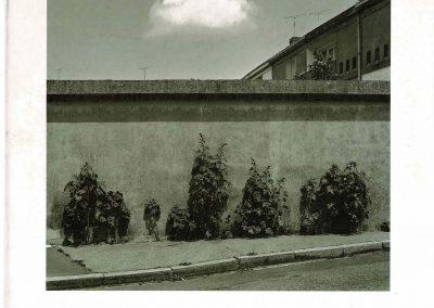 Calais Vu Par Nigel Green & Robin Wilson, 2001